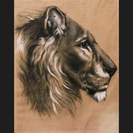 http://www.cerca-trova.fr/11702-thickbox_default/ecole-francaise-du-xixeme-siecle-tete-de-lion-dessin.jpg