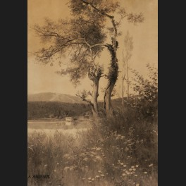 http://www.cerca-trova.fr/13932-thickbox_default/alfredo-d-andrade-paysage-lacustre-dessin.jpg