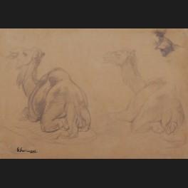 http://www.cerca-trova.fr/19174-thickbox_default/gustave-achille-guillaumet-etudes-de-dromadaires-dessin.jpg