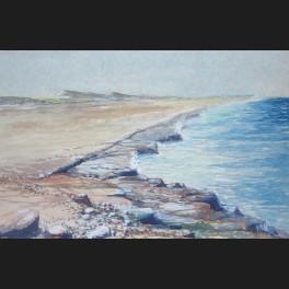 http://www.cerca-trova.fr/287-thickbox_default/o-notenboom-colorado-point-a-aruba-aux-antilles-aquarelle.jpg